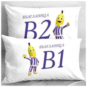 Калъфки за влюбени двойки B1 & B2
